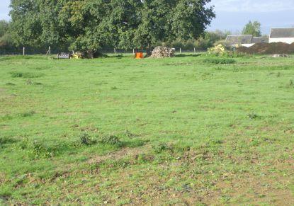 A vendre Terrain constructible Ouilly Le Tesson | Réf 7401418223 - Rezoximo