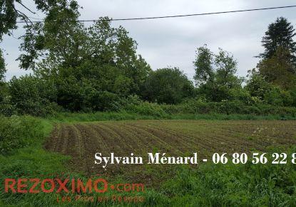 A vendre Montournais 7401419327 Rezoximo