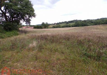 A vendre Terrain agricole Mielan   Réf 7401420220 - Rezoximo