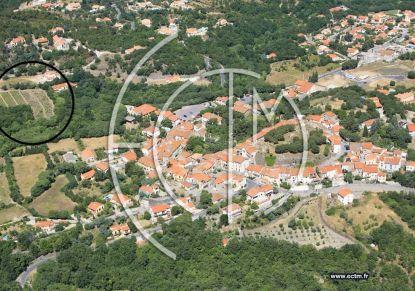 A vendre Terrain constructible Montesquieu Des Alberes | Réf 7401420745 - Rezoximo
