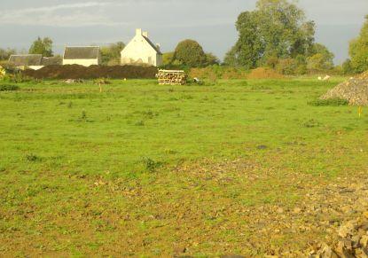 A vendre Terrain constructible Ouilly Le Tesson | R�f 7401421128 - Rezoximo