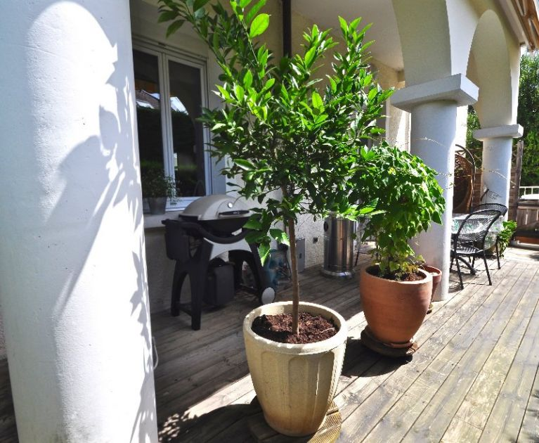 A vendre Annecy 74019373 Stellangel immobilier