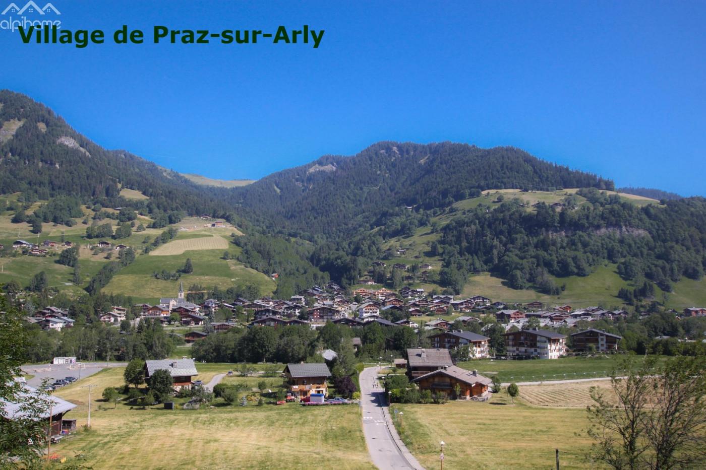 A vendre Praz Sur Arly 74021371 Alpihome