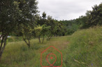 A vendre Viviers 7500862250 Naos immobilier