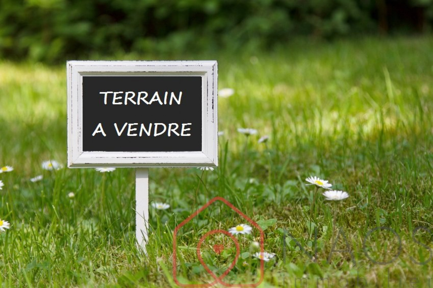 A vendre Ferrieres 7500877780 Naos immobilier
