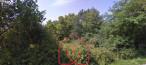 A vendre  Saint Etienne De Chigny   Réf 7500897764 - Naos immobilier