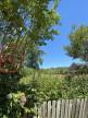 A vendre  Neuvy Sur Barangeon | Réf 7500898583 - Naos immobilier