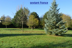 A vendre Vimoutiers 7501193274 Sextant france