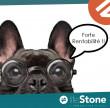 A vendre  Orange | Réf 750531204 - Lifestone grand paris