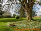 A vendre Fauville En Caux 760033011 Klicc immobilier