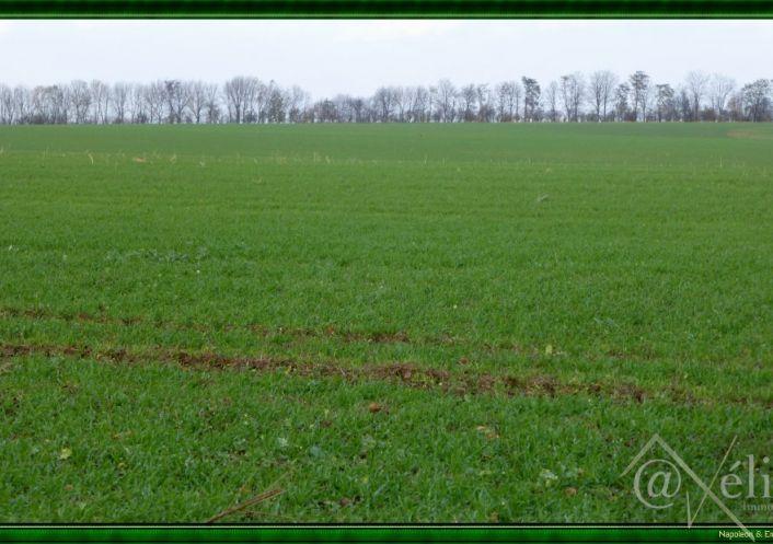 A vendre Sable Sur Sarthe 777921520 Axelite sas