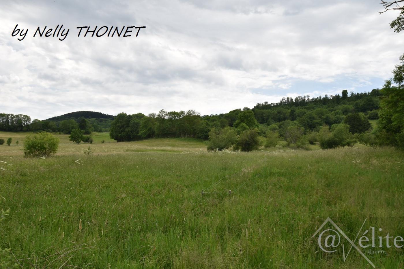A vendre Saint Bonnet Pres Orcival 77792935 Axelite sas