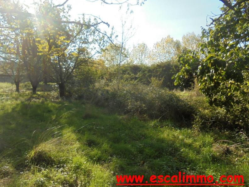 A vendre Castelsarrasin 820024607 Escal'immo