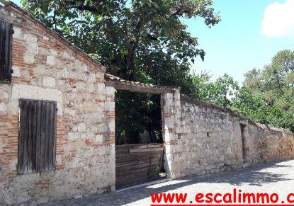 A vendre Auvillar 820024629 Escal'immo