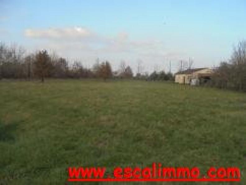 A vendre Castelsarrasin 820024656 Escal'immo