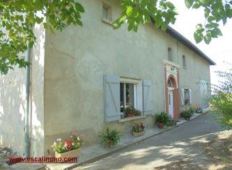 A vendre Castelmayran 820034529 Portail immo