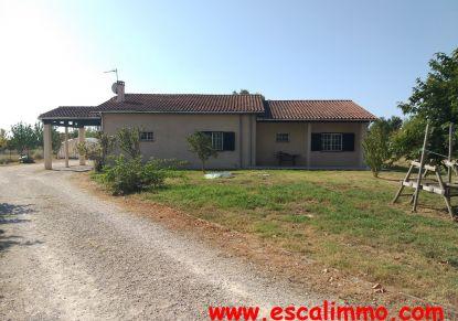 A vendre Castelsarrasin 820034541 Escal'immo