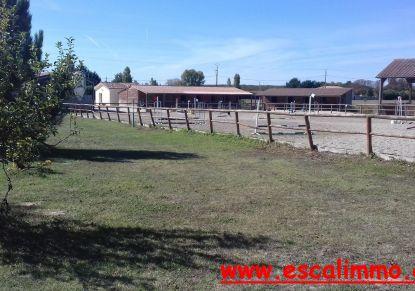 A vendre Castelsarrasin 820034568 Escal'immo