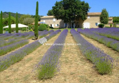 For sale Joucas 840101039 Provence home