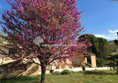 A vendre Bonnieux 84010725 Provence home