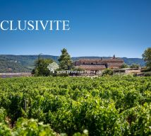 For sale Bonnieux 84010855 Provence home