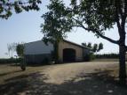 A vendre Rauzan 8500261517 A&a immobilier - axo & actifs