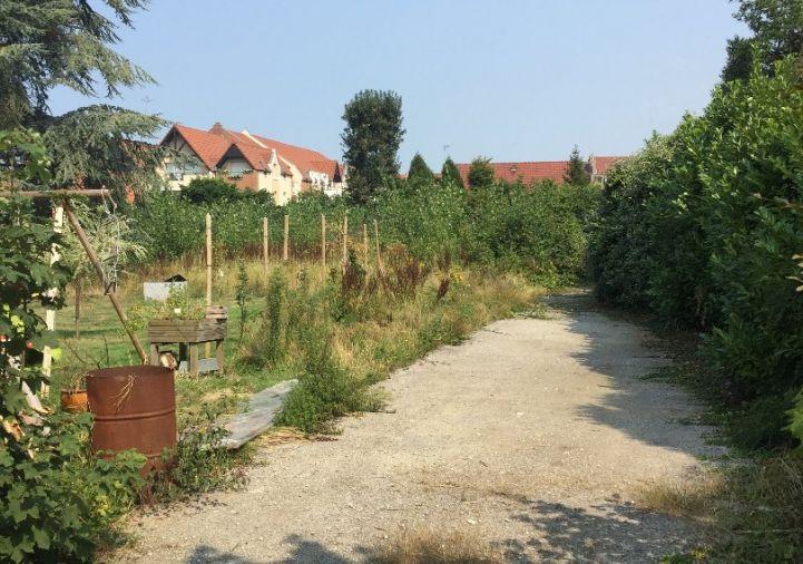 A vendre Rosendael 8500265646 A&a immobilier - axo & actifs