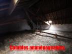 A vendre Saint Colomban 8500276776 A&a immobilier - axo & actifs