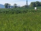 A vendre  Saint Lizier | Réf 8500281759 - A&a immobilier - axo & actifs