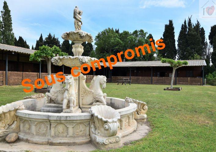 A vendre Saint Martin De Crau 910011107 Ici