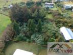 A vendre La Plaine Des Cafres 970087146 Maximmo cg transaction
