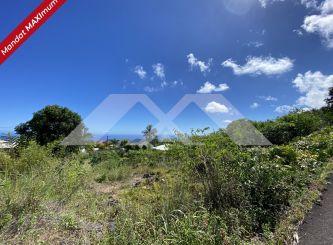 A vendre Terrain Petite Ile | Réf 970088115 - Portail immo