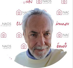 Michel C. NAOS immobilier