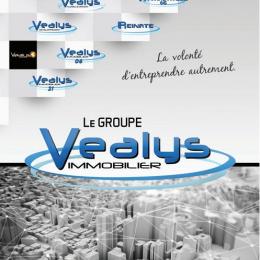Plaquette commerciale  Vealys