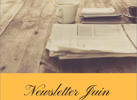 Newsletter juin 2020 Pierres passion immobilier