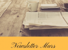 Newsletter fnaim mars 2021 Pierres passion immobilier