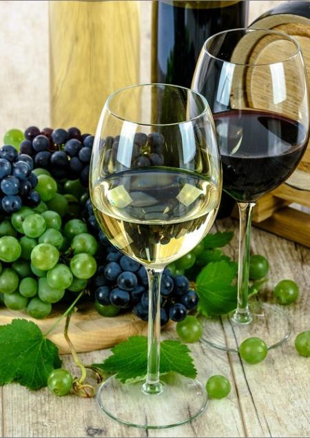 Les domaines viticoles français, un investissement rentable Agence galerie casanova