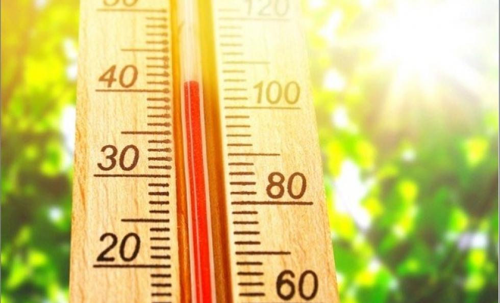 Canicule : conseils et astuces pour protéger sa maison de la chaleur Abessan immobilier