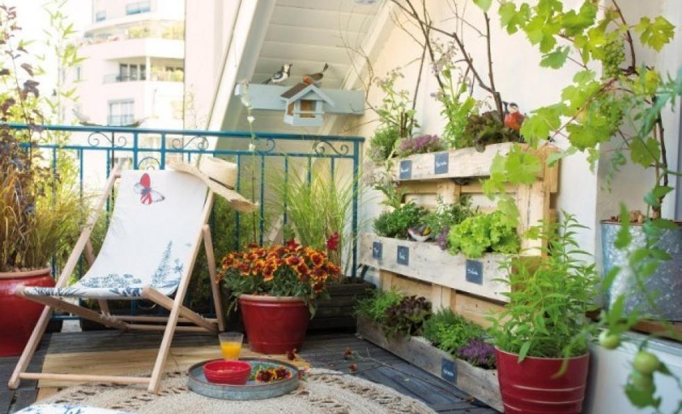 Redonner vie à mon balcon : 10 conseils entretien, aménagement et jardinage  Abessan immobilier