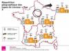 Rénovation énergétique : les primes énergie varient fortement selon les régions S'antoni immobilier