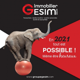 Le groupe gesim vous souhaite une bonne année 2021 ! Groupe gesim