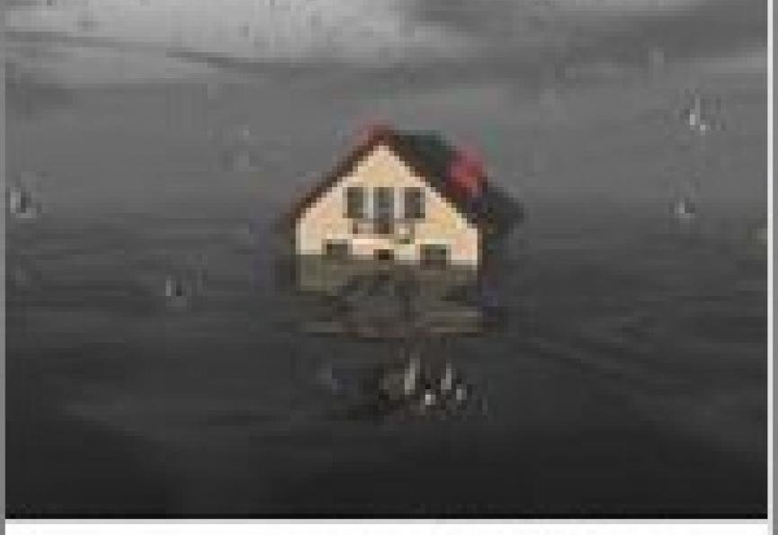 Comment réagir en cas de dégât des eaux 5'5 immo