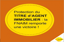 Reconnaissance du titre d'agent immobilier, la fnaim avance auprès du gouverneme Comptoir immobilier de france