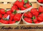 Avril-mai 2018 fête de la fraise  Eugène de graaf