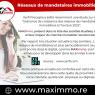 Le réseau maximmo, un acteur majeur du marché immobilier à la réunion ! Maximmo cg transaction