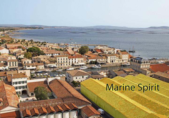 Programme neuf Marseillan Hérault 345002 Les clés du soleil
